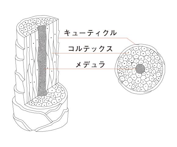 h0001_01